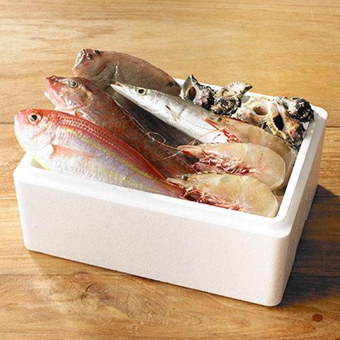 漁師の産直 季節の鮮魚3000