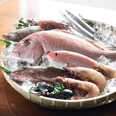 漁師の産直 季節の鮮魚10000